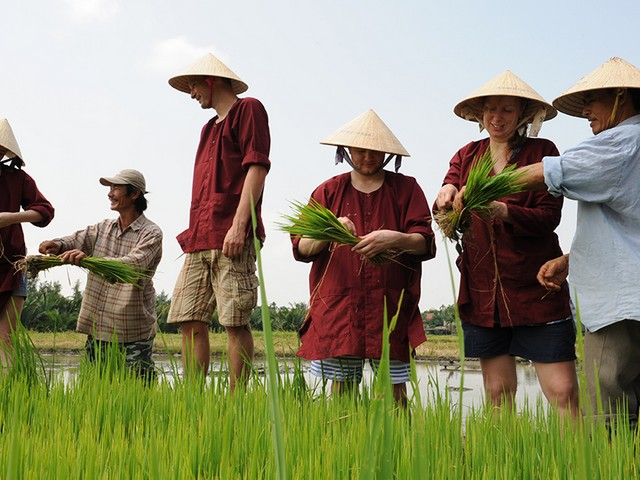 farming tour hoi an