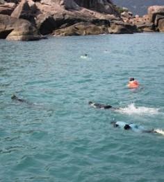 snorkeling da nang