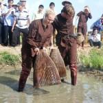 farming fishing in hoi an