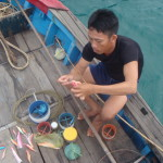 fishing in danang